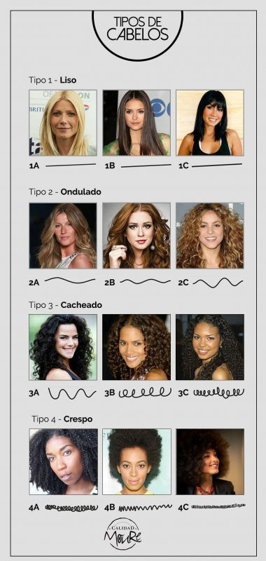 clasificacion de pelo