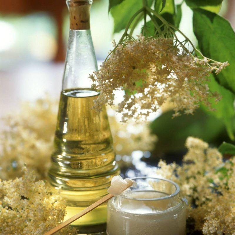 productos veganos para el cabello ondulado y rizado (2)