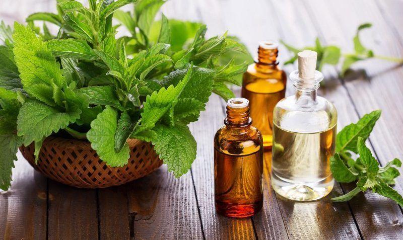 productos aromaterapia vegana biologica para el pelo ondulado rizado y liso (3)